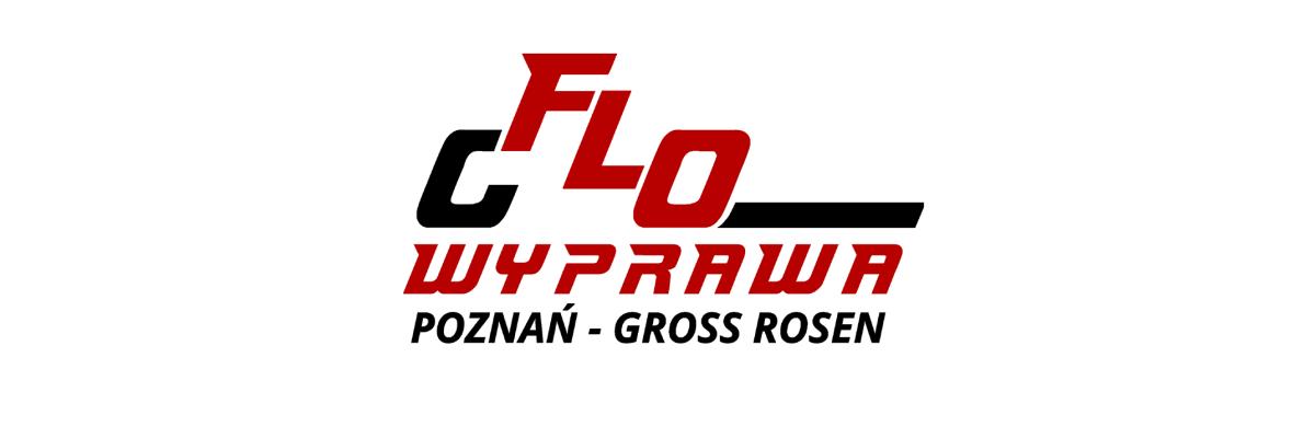 logo flowyprawa
